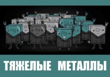 Понятие «тяжёлые металлы»