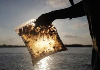 Типы загрязнений воды и методы очистки  (часть 2)