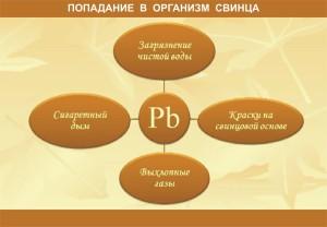СВИНЕЦ_2